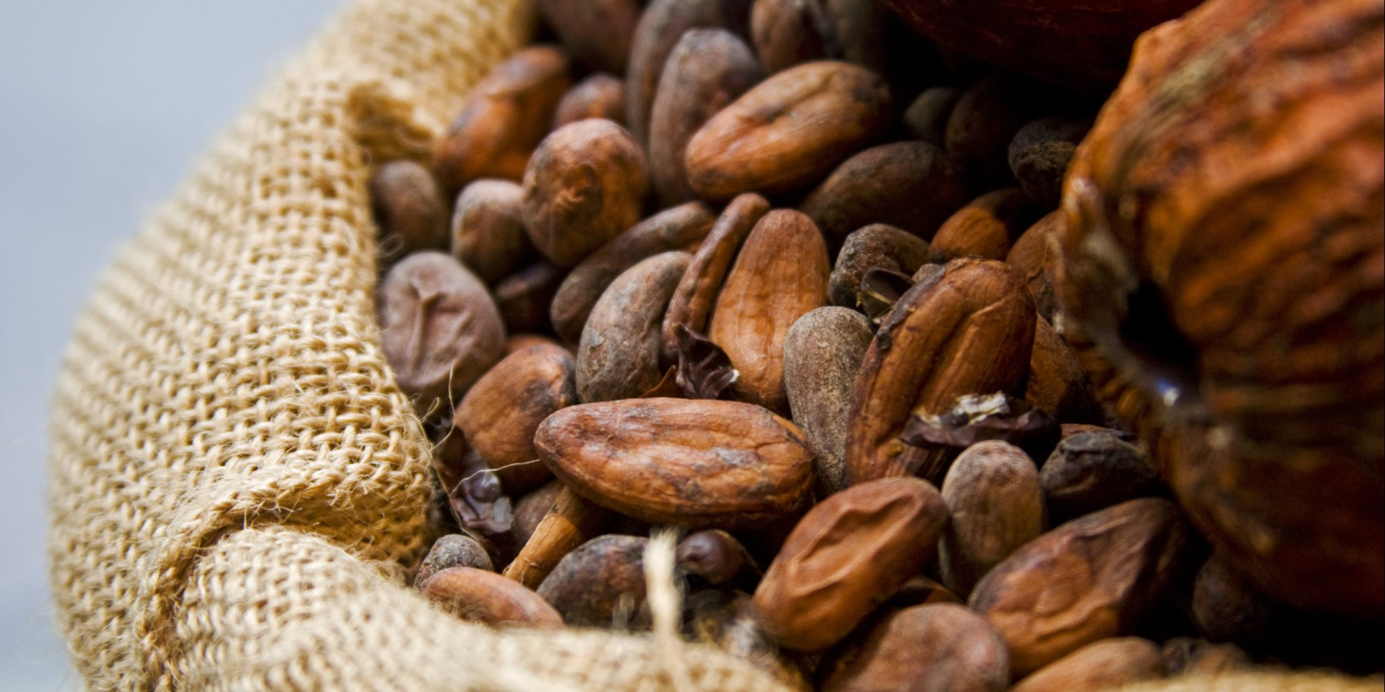 Reduce Wrinkles With Cocoa