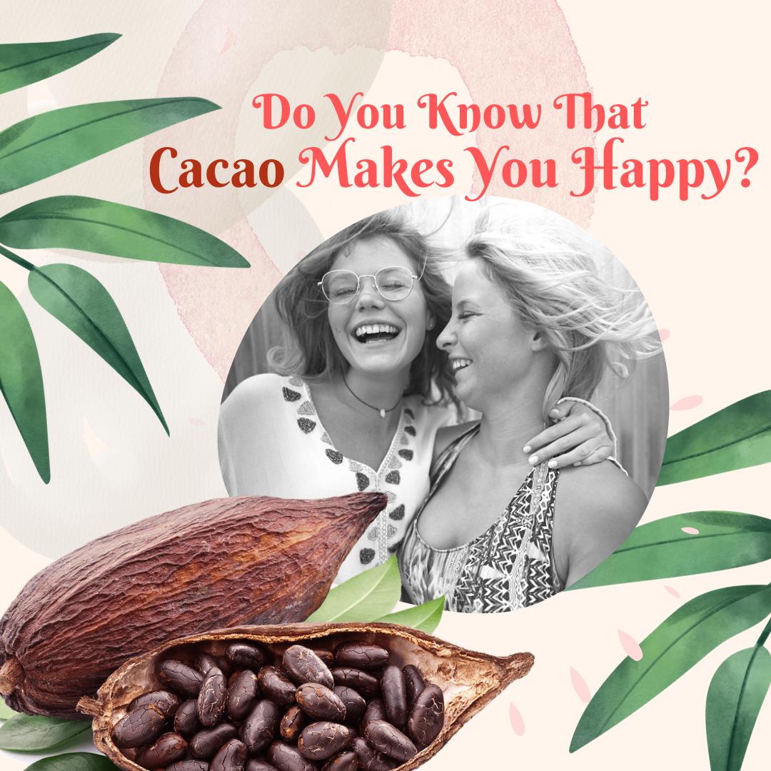 Cacao Powder Malaysia